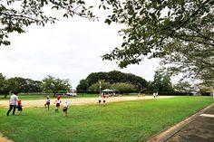 2016年9月27日(火)こんにちは。「運動会ウィーク」。今週末に運動会を控え、幼稚園では練習が本格化。竹馬や組み体操など、朝から一生懸命の子供たち。そんな流れで送迎バスが1週間お休み。今週1週間、お見送りをすることになりました。加古川駅前から車で約15分、駐車場に車を置いて公園をぶらり。緑の多い環境、とてもいいですね~。通勤時間0分の自分にとって、出先からの出勤は良い気分転換になります。またボォ~っとしに行こう(^^  それでは、今日も皆様にとって良い1日になりますように☆ 【加古川・藤井質店】http://www.pawn-fujii.jp/