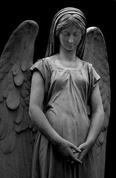 Angel peace