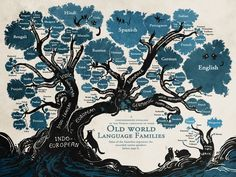 For reasons both poetic and pragmatic, the tree has historically been the designer's go-to inspiration for mapping relationships. In the graphic below, Finish-Swedish illustrator Minna Sundberg artfully uses this format to trace the world's largest language families. All of the languages illustrated here stem from subcategories of either Indo-European or Uralic origin, and upon closer inspection many fascinating links are revealed.