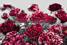 Temptation fotobehang XXL4-002 Bloemen - Planten Komar