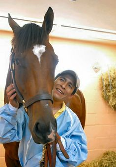 Barbaro Horse | HorsesDiaries.com » Barbaro, and Saddlebred Rescue