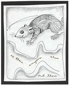 Little Rodent - Pen and Pencil Drawing, Text: chipmunk, squirrel, animals, words, mixed media.