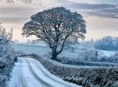 Memories of Winter in Ireland - Irish Fireside Travel and Culture Ireland In Winter, I Love Winter, Winter Time, Winter Walk, Winter Colors, Winter Season, Names Of Artists, Between Two Worlds, Winter's Tale