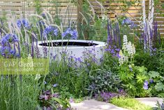 Mixed planting in purples, blues and whites with Salvia nemorosa 'Caradonna', Pennisetum orientale 'Tall Tails', Agapanthus africanus 'Midnight Star' and 'Verbena rigida ar Stone Water Features, Indoor Water Features, White Gardens, Small Gardens, Outdoor Gardens, Purple Garden, Colorful Garden, Hampton Garden, Garden Makeover
