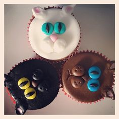Catsparella: Cat Cupcake Tuesdays  i want for my bday!!!