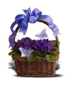 Violets & Butterflies Basket