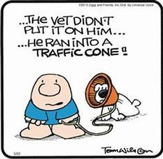 Image result for Ziggy Comic Strip Archive