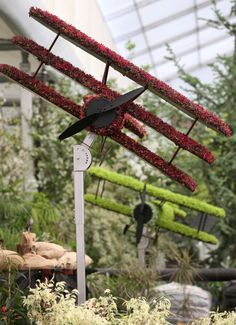 Chelsea Flower Show 2014: Pictures Of The Glorious Gardens And Displays