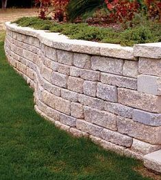 retaining wall - wil