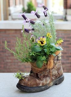 I have my son's (Ben) small Harley boots filled with succulents as well as a friend, who wore size 16 (boots) also planted - they add such interest to the garden/porch/deck/landscaping. ~Trish