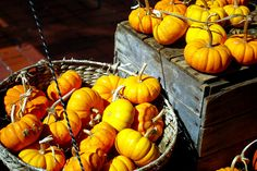 U Street Farmers Market