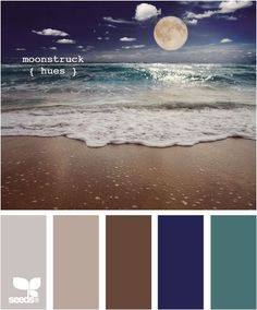Image result for best shade of blue for bedroom with night sky theme