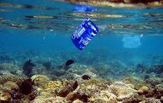 Ese detergente llena el mar de plástico. Expertos en contaminación marina destacan que la limpieza de los microplásticos presentes en limpiadores con polímeros es inviable