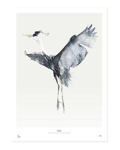 Birds / Free   My Deer Art Shop