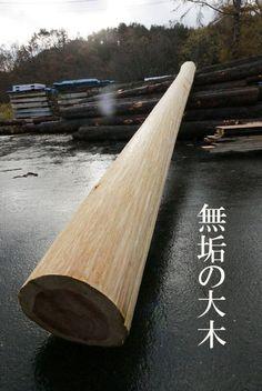 1122koujyo-0.jpg (384×574)