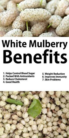 White Mulberry Benefits  1. Helps Control Blood Sugar 2. Packed With Antioxidants 3. Reduce Cholesterol 4. Good Health 5. Weight Reduction 6. Improves Immunity 7. Skin Problems