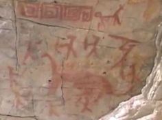 In May of 2012 researcher Vance Nelson brought to our attention an pictograph from the Amazon rainforest that is said by secular archaeologists to be thousands of years old. Amazingly, one of the pictographs shows nine warriors hunting what appears to be a dinosaur. In the 1940's the American explorer Percy Fawcett brought back reports of a large dinosaur-like creature from this same region of the Amazon.