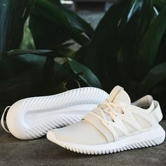 Adidas Originals Women s Tubular Viral