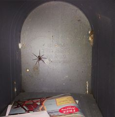 Getting the mail of the mailbox as fast as possible just in case there's a huge spider lurking.