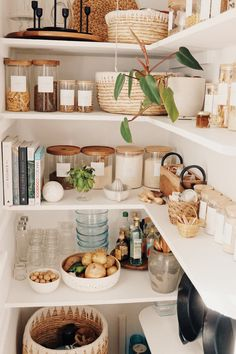 Kitchen Organization Pantry, Diy Kitchen Storage, Home Organization, Ikea Pantry Storage, Ikea Kitchen Pantry, Pantry Diy, Kitchen Pantry Design, Organizing, Kitchen Dining