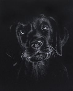 Drawing on black paper