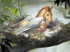 Pegasus Nest by Monika Andruszkiewicz [©2016 Aomori]