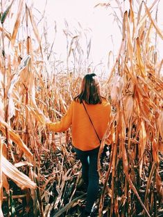Halloween and corn mazes fall Foto Cowgirl, Pumpkin Patch Pictures, Fall Dates, Autumn Photography, Photography Lighting, Photography Tips, Street Photography, Landscape Photography, Portrait Photography