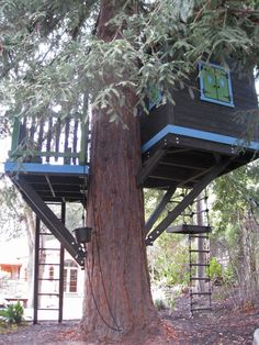 Barbara+Butler-Extraordinary+Play+Structures+for+Kids+-Classic+Treehouse