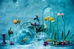 Nice colors with terrarium flowers birds