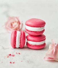 Sweet Friday!   Art And Chic