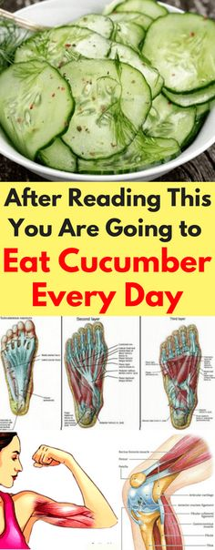 After reading this, you are going to eat cucumber every day - Workout Hit