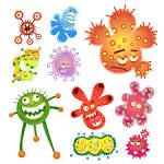 virus dibujo Study Suggests Gut Bacteria May Be Able to Trigger Autoimmune Disorders - Health Rising Les Microbes, Study Biology, Main Image, Flora Intestinal, Virus, Cartoon Posters, Cartoon Images, Gut Bacteria, Chronic Fatigue Syndrome