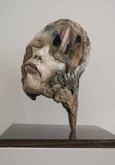 "Michelle Dickson ""Neither Mine Nor Yours, 1"" Plaster, driftwood, birch plywood…"