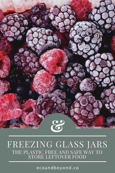 Freezing glass jars helps to preserve food, reduce plastic and minimise health risks. Here's how to reuse glass jars as zero waste storage containers. Glass Containers, Glass Jars, Going Zero Waste, Plastic Trays, Leftovers Recipes, Recycling Bins, Canning Jars, Food Waste, Sustainable Living