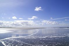 Earth Day today! (Schiermonnikoog island, The Netherlands)