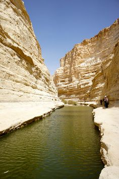 Pool of water in Ein Avdat Canyon, Israel (by Esme_Vos).