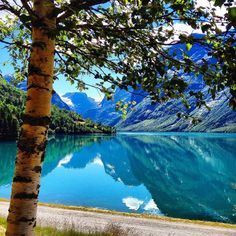 Scenic splendors of Norway : Photo My Happy Place, The Great Outdoors, Mother Nature, Wilderness, Norway, Scenery, River, Explore, Mountains