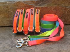 Sun Valley Out Of Bounds Sport Collars and Leashes