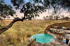 Вдохновлённый дикой природой отель в Ботсване