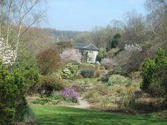 The Garden House, Devon.