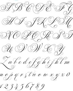 Open link more L's Calligraphy Fonts Alphabet, Flourish Calligraphy, Cursive Alphabet, Copperplate Calligraphy, Hand Lettering Alphabet, Handwriting Fonts, Penmanship, Script Fonts, Tattoo Lettering Styles