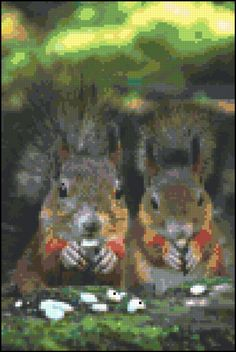 Cross Stitch Squirrels Sharing A Meal Pattern Design Chart Wild Animal Rodent Nature PDF Digital File Instant Download by theelegantstitchery on Etsy