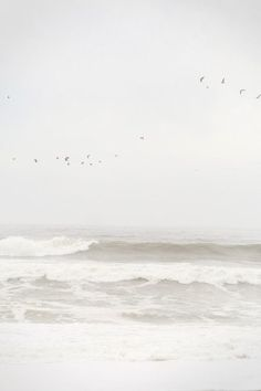 I love the ocean, the smell and the waves are: freedom