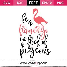 *** FREE SVG CUT FILE for Cricut, Silhouette and more ***  Be a flamingo in flock of a pigeons