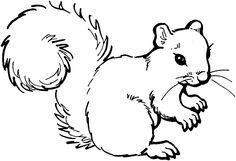 black and white contrast art for kids | Call to Artists | Can You Draw a Squirrel? | Josh Mosey | Writer