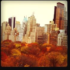 new york city - where I want to be on this fall day