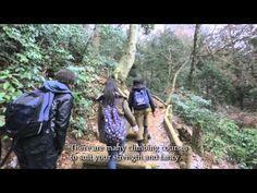 Takao-san - YouTube