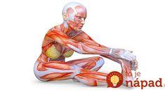 7 naťahovaní za 7 minút, vďaka ktorým máte chrbticu ako za mlada: Zlepšia pohyblivosť aj po 60-tke a môžete ich cvičiť pred telkou! Lion Sculpture, Relax, Exercise, Gym, Healthy, Sports, Stretching Exercises, Stretches, Armpit Workout