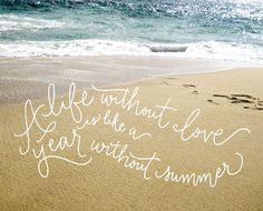 summer love by Bright Room Studio