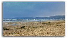 Stormy weather  #Weather #wetter #Ostsee #BalticSea #Mare #Meer #Insel #Rügen #Binz #Beach #Strand #Natur #Nature #Flickr #Foto #Photo #Fotografie #Photography #canon6d #Travel #Reisen #Urlaub